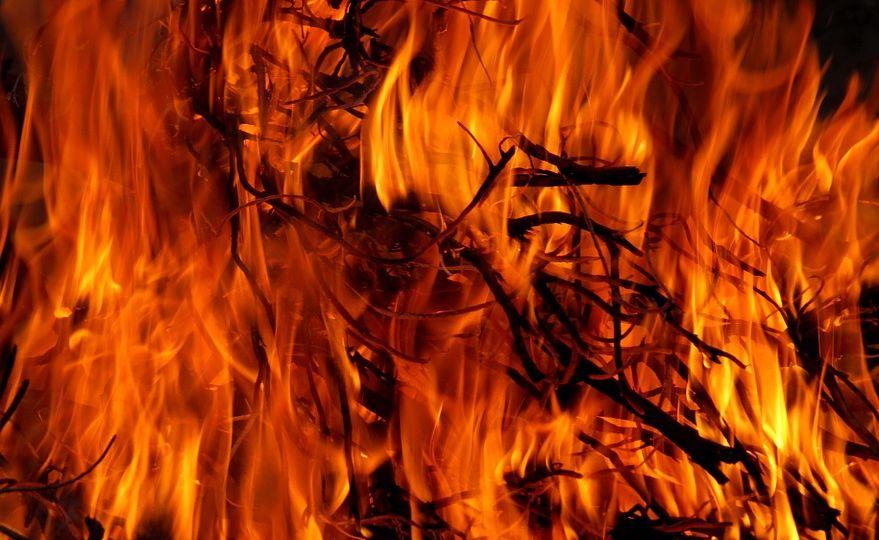 fire_law